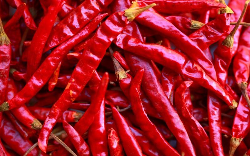 hot-pepper-800×500